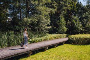 Kobieta spacerująca po drewnianej trasie spacerowej